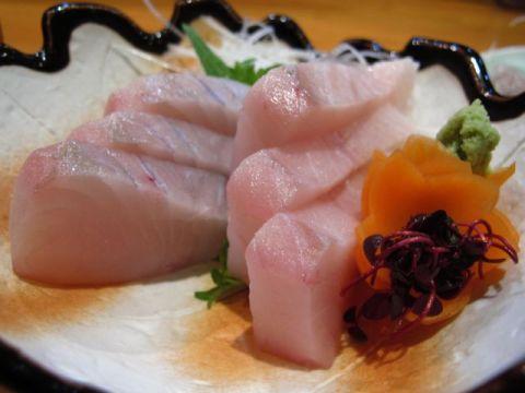 岡山の旬の魚たち