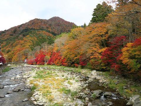 塩原の紅葉~紅の吊橋