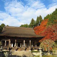 京都紅葉2013(4)~勝林院・宝泉院