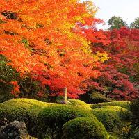 京都紅葉2013(15)~詩仙堂・金福寺