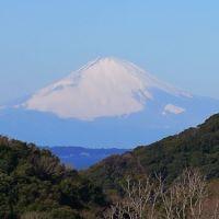 鋸南町からの富士山と水仙