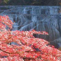 紅葉の袋田の滝(前編)